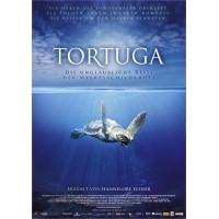 Tortuga – Die unglaubliche Reise der Meeresschildkröte